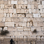 'A lone Jewish man stands at the Wailing Wall, Old City of Jerusalem; Jerusalem, Israel'