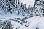 river at Yoho National park, Emerald lake, Yoho National Park, British Columbia, Kanada, north america
