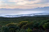 Sunrise, Walker Bay, Groteboos, Garden Route, South Africa