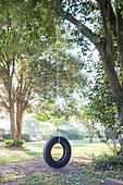 Reifen Schaukel hängen vom Baum