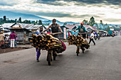 Local men transporting their goods on self made carriers, Goma, Democratic Republic of the Congo, Africa