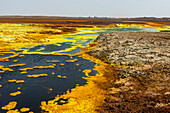 Colourful spings of acid in Dallol, hottest place on earth, Danakil depression, Ethiopia, Africa