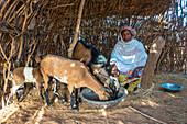 Peul goat herder, Senegal, West Africa, Africa