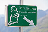 Sign Murmeltiere, german for marmot or groundhog, Grossglockner Hochalpenstrasse, High Alpine road, Austria