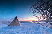 Rosa Himmel bei Sonnenaufgang auf isolierte Sami Zelt im Schnee, Abisko, Gemeinde Kiruna, Norrbotten County, Lappland, Schweden