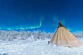 Isolierte Sami Zelt im Schnee unter Nordlichtern, Abisko, Gemeinde Kiruna, Norrbottens län, Lappland, Schweden