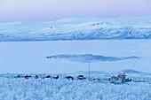 Blick auf die Häuser von Abisko, am Ufer des Tornetrask-Sees. Abisko, Abisko Nationalpark, Norbottens Ian, Schweden, Europa