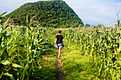 Young woman walking on footpath through corn field