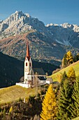 Autumn morning at the iconic alpine church in Winnebach, South Tyrol, Italy.
