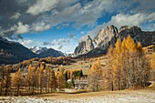 Autumn afternoon in the Dolomites near Cortina d'Ampezzo, Italy.