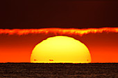 France, Normandy. Montmartin-sur-Mer, Sunset. The black dots at the foot of the sun are the coasts of Jersey