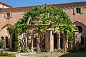 France, Southern France, Vileveyrac, Cistercian abbey of Holy Mary of Valmagne, cloister fountain