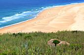 Portugal, Nazare. Praia do Norte. The northern beach.