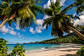 Petit Police Bay Beach, Mahe, Republic of Seychelles, Indian Ocean, Africa