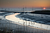 Tidal pool in the Wattenmeer National Park at sunset, German North Sea, Wremen, Land Wursten, Cuxhaven, Lower Saxony, Germany