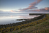 Jade Bay with mole in the morning light, Wattenmeer National Park, German North Sea, Wilhelmshaven, Lower Saxony, Germany