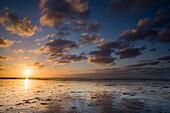 Sunset at the German North Sea, Wattenmeer National Park, Schillig, Wangerland, Landkreis Friesland, Lower Saxony, Germany