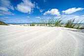 Sand dunes under blue sky, Spiekeroog, German North Sea, Wattenmeer National Park, Ostfriesland, Lower Saxony, Germany