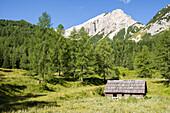 Hut on alpine meadow in front of Mojstrovka mountain, Gorenjska, Upper Carniola, Triglav National Park, Julian Alps, Slovenia