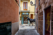 ' Horse-drawn carriage in the old city of Palma, Palma de Mallorca; Balearic Islands; Spain; Europe'