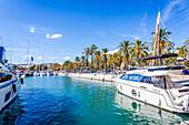 Luxury yachts at the port of Mallorca. Puerto de Palma, Port of Palma, Palma, Mallorca, Spain, Europe