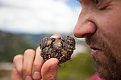 Photograph of man smelling bear scat while mountaineering, Chilliwack, British Columbia, Canada