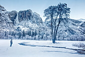 Majestic scenery with Yosemite Falls in winter, Yosemite National Park, California, USA