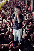 Boy covering eyes standing in chicken coop