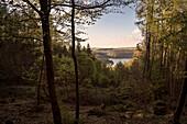 UNESCO World Heritage Old Beech Groves of Germany, View to lake Edersee, Kellerwald Edersee National Park, Hesse, Germany