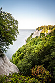 UNESCO World Heritage Old Beech Groves of Germany, Jasmund National Park, chalk cliffs of Ruegen Island, Mecklenburg-West Pomerania, Germany, Baltic Sea
