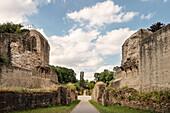 UNESCO World Heritage Trier, amphitheatre, Trier, Rhineland-Palatinate, Germany