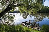Ruderboot und Baum am Ufer von Fluss Petit Saône, Ray-sur-Saône, Haute-Saône, Bourgogne Franche-Comté (Burgund), Frankreich, Europa