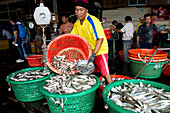 Worker in a fish factory on Pangor Island, Malaysia