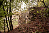 """UNESCO World Heritage Ice Age Caves of the Swabian Alb, """"Hohler Fels"""" Cave (where """"Venzs vom Hohlen Fels"""" was found), Aach Valley, Baden-Wuerttemberg, Germany"""