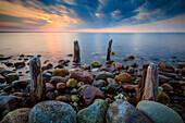 poles, pole, Baltic Sea, Brooker Wald, Mecklenburg Vorpommern, Groß Schwansee, Germany