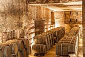 France, Gironde, Chateau de la Riviere in the AOC Fronsac wine-growing region, former limestone quarries used for barrel ageing