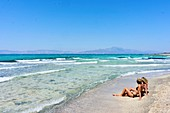 Two young women, best friends, sitting together on the beach, Dutch ethnicity, At holiday destination Chrissi Island, Crete, Greece