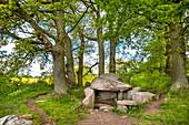Prehistoric grave, Lancken-Granitz, Ruegen Island, Mecklenburg-Western Pomerania, Germany
