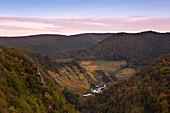 Rocky landscape of the Ahr valley, vineyards  near  Reimerzhoven, Ahrsteig hiking trail, Rotweinwanderweg hiking trail, Ahr, Rhineland-Palatinate, Germany
