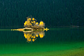Small island in Eibsee, Werdenfelser Land, Bavaria, Germany