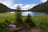 Kleiner Arbersee, Bavarian Forest, Bavaria, Germany