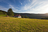 Farm at the path to Kleiner Arbersee, Bavarian Forest, Bavaria, Germany