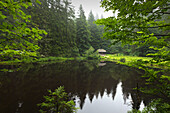 Pond at Hoellbachschwelle, hiking path to Grosser Falkenstein, Bavarian Forest, Bavaria, Germany