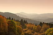View over the wooded hills, near Hoenningen, Eifel, Rhineland-Palatinate, Germany