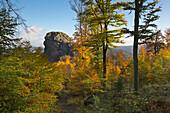 View to Bornstein rock, Bruchhauser Steine, near Olsberg, Rothaarsteig hiking trail, Rothaar mountains, Sauerland, North Rhine-Westphalia, Germany