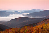 Morning mist, view over the woody hills, near Wildewiese, Rothaar mountains, Sauerland, North Rhine-Westphalia, Germany