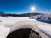 fresh snow on almost completely frozen lake Wagenbrüchsee, Bavaria, Germany