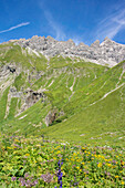 Long Distance Hiking, Mountain Landscape, Summit, Hiking Holiday, Nature, Summer Meadow, Flower Meadow, Alpine Meadow, Hiking Trails, Allgaeu, Alps, Bavaria, Oberstdorf, Germany