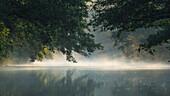 Spreewald Biosphere Reserve, Brandenburg, Germany, Kayaking, Recreation Area, Wilderness, River Landscape in the morning mist, Solitude, Morning Mist, Water reflection
