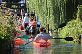 Spreewald Biosphere Reserve, Brandenburg, Germany, Kayaking, Recreation Area, Family Vacation, Family Outing, Paddling, Wilderness, Excursion, Day Trip, Kayakers paddling down the river Landscape